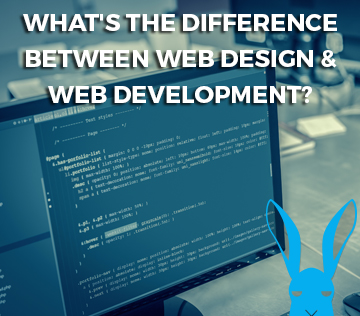 What's the difference between Web Design Web Development
